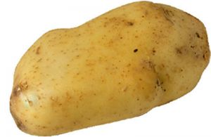 potatoes_777_20080430102127_525